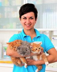Anna German bei der Arbeit