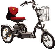 Van Raam Easy Go Scooter Dreirad und Elektro-Dreirad für Erwachsene - Spezial-Dreirad 2017