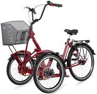 Pfau Tec Primo Daum Dreirad und Elektro-Dreirad für Erwachsene - Front-Dreirad 2017