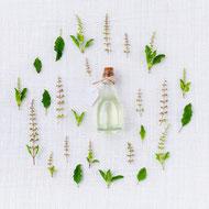 Herbes aromatiques et flacon