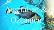 Reiseblog Spurenwechsler Ozeanien Australien