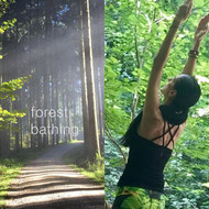 forest bathing - Waldbaden