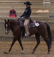 Claudia und Fiddle bestehen die Trainer-C Prüfung ! Auf geht´s nach Amerika !!! www.creak-ranch.com