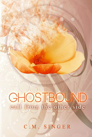Ghostbound - call from the other side, Englisch, 270 Seiten