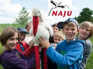 Unsere NAJU-Gruppe bietet Natur erleben - Natur entdecken - Natur schützen lernen! Hier findet Ihr weitere Infos zur neuen NAJU-Gruppe...