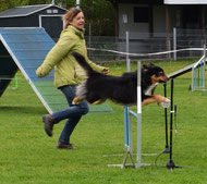 Jamie: 3 ASCA Wochenenden innerh. 2 Monaten: 2 x HIT Rally-O, mehrere X in Masters und Excellent, 2 legs UD, Agility RS-N GS-N