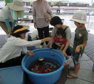 ▲ ユニセフコーナーで「トマトすくい」を楽しむ親子連れ