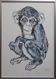 Nr. 3179 Schimpanse