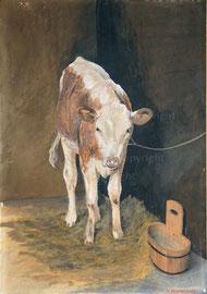 Nr. 1278 Das Kalb im Stall