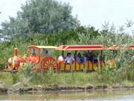 petit train visite Domaine de Sylvéréal