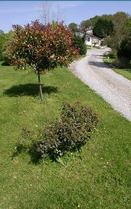 à 1.2 km: Chambres d'hôtes YODA à Saint-Jean-de-Luz.