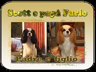 SCOTT  E  PAPA'  FURIO