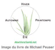 Il est donc recommandé de boire la boisson vitale d'aloe vera pendant une durée d'au moins 6 mois.