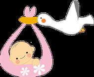 コウノトリと赤ちゃんのイラスト2