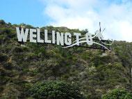 Wellington-UpperHutt 45km