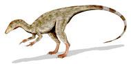 Bild eines Compsognathus