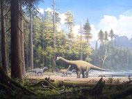 Bild eines Europasaurus