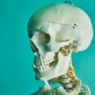 Schädel auf türkisem Hintergrund Foto: pexels/Engin Akyurt