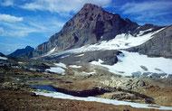Rotferdenhorn  und -gletscher vom Lötschenpass