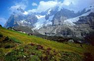 Wengernalp, Eigr, Mönch und Jungfraujoch