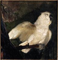 Édouard Manet, Deux perroquets, huile sur toile, collection musée des beaux-arts de Brest.