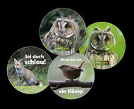 Button Eule, Fuchs, Vogel