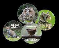 Button Eule, Fuchs, Vogel