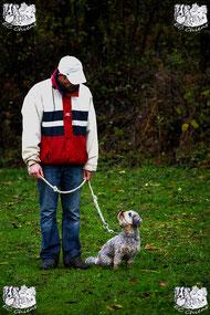 ec chiens ; cours education canine avec un educateur comportementaliste canin pour eduquer son chien et apprendre au chien a marcher au pied ; cours de dressage effectué dans le doubs