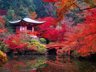 le temple daigo ji guide francophone prive au japon