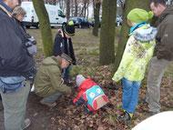 Manfred Miethke erklärt den jüngsten Teilnehmern, wie alles in der Natur zusammenhängt - ein Specht sucht sich auch mal sein Futter im Totholz am Boden.