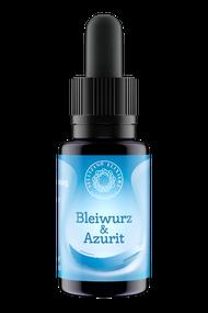 Bleiwurz Azurit
