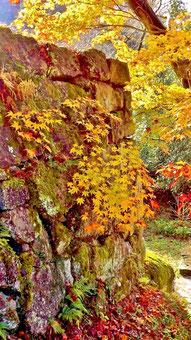 絶景山城。付知狭不動渓谷観音の滝。中津川の里山の美しい紅葉真っ盛り中津川付知峡周辺食事処和食処絶品ランチグルメ旅