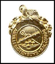 Vereinsabzeichen in  Gold Artilleristenbund Salzburg