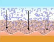 Wirkstoffe werden in die Haut eingebracht
