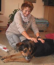 Tierphysiotherapeutin Beate Ufer