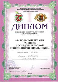 Диплом окружного конкурса проектов (март 2010 г.)