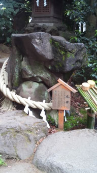 氷川神社にあった、犬の横顔に見えるという石。