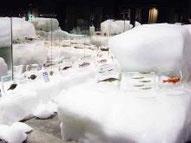 北海道立オホーツク流氷科学センター