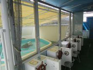 琴平海洋博物館(海の科学館)