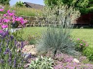 Gartenzaun, Zaun aus Holz, Sichtschutz, Stagetenzaun, Lattenzaun, Trennwand, Gartenunterhalt