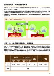 小規模木質バイオマス発電の推進