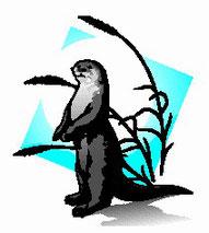 La Nútria (Lutra lutra) es, desde 2004, el logo de los Espacios Naturales del Aiguabarreig