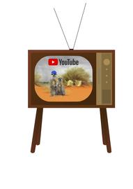 Paulinchens und Onkel Paules TV Sender