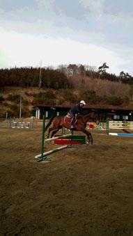 若馬トレーニング