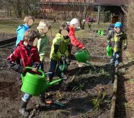 Pflanzung an der Herrschinger Grundschule, 2013