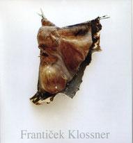 Contemporary Art / Galerie Mönch / Berlin / Germany / Franticek Klossner
