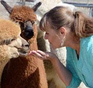 Diena Riddle alpaca wool