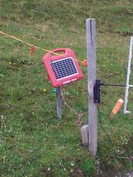 Elektrische Weidezäune mit Solaranlage ermöglichen eine kontinuierlich elektrische Spannung, wobei der Stromkreis jedoch erst geschlossen wird, wenn das Tier mit dem Solarstrom betriebenen Weidezaun in Kontakt kommt.