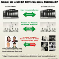 Difference mlm et société traditionnelle