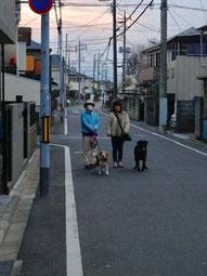 ビルと一緒にお散歩帰り家族が撮影してくれました
